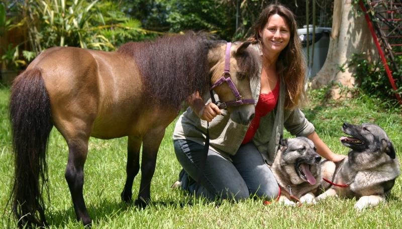 DOG & PUPPY TRAINING OAHU, HAWAII
